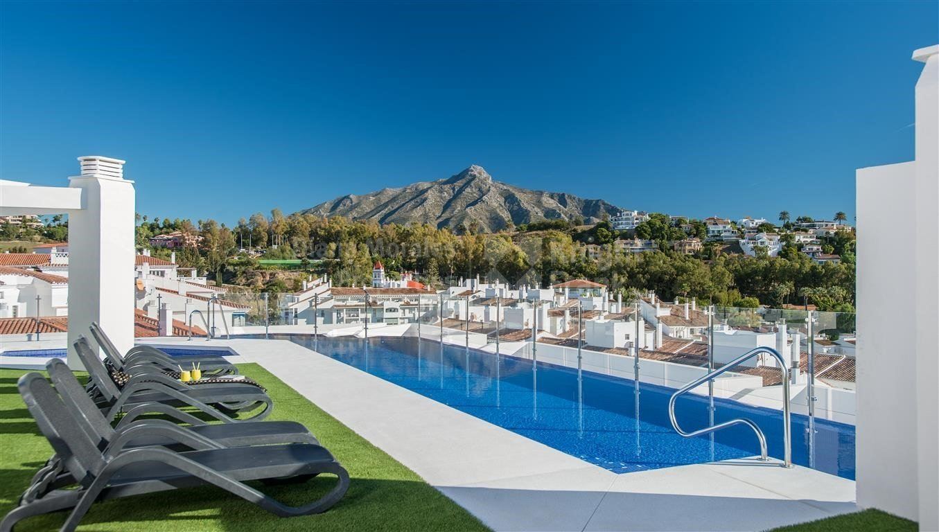 Property Nueva Andalucia